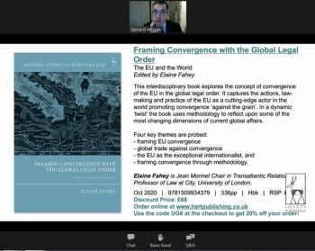 Screenshot from Zoom showing speaker Gerard Hogan and slide showing the book cover and brief introduction.